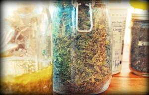 leczenia ziołami